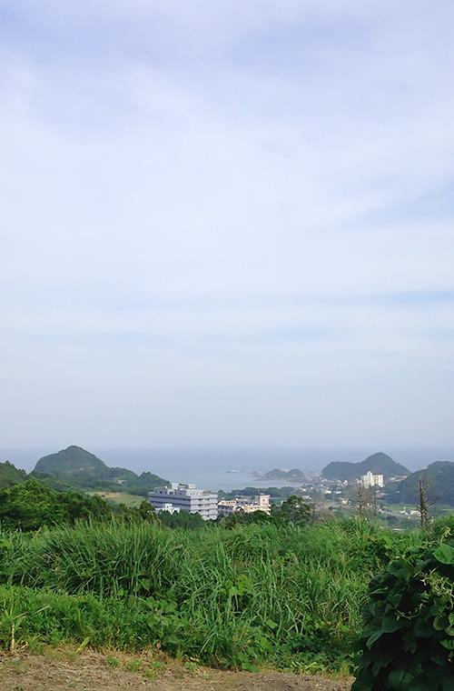 嶺岡から見る太海地区